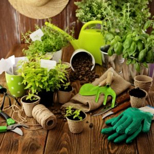 Gardening tools on a table